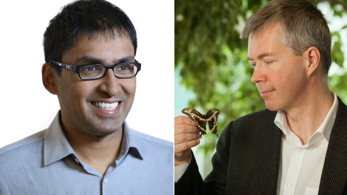 Deux photos portraits de scientifiques, l'une d'un homme avec des lunettes et l'autre d'un homme tenant un papillon dans sa main droite