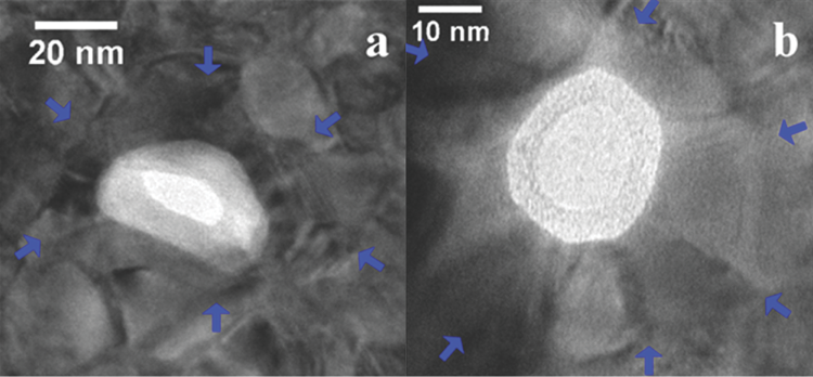 Bright field TEM images of two metallized nanopores